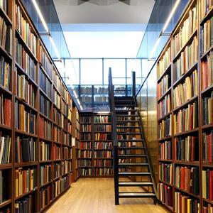 Библиотеки Великодворского